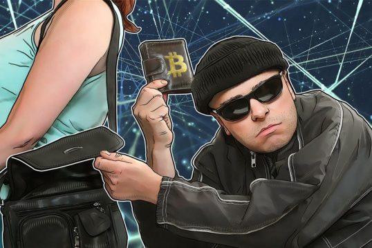 Crazy-Razy-bitcoin-thief